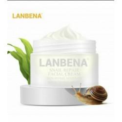 کرم تخصصی روشن کننده و ضد چروک حلزون لانبنا |LANBENA